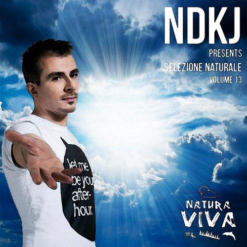 Album Art - NDKj Presents Selezione Naturale Volume 13