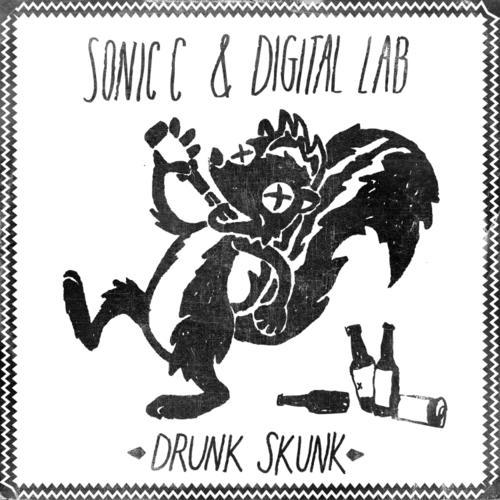 Album Art - Drunk Skunk