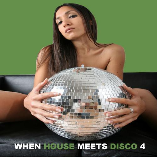 Album Art - When House Meets Disco Volume 4