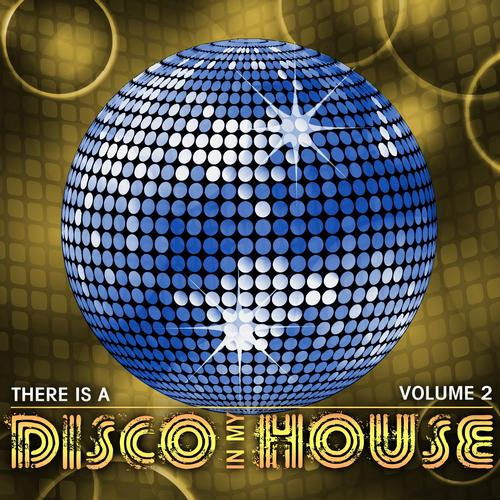 Album Art - There Is a Disco in My House, Vol. 2