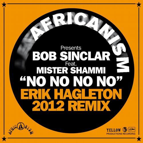 Album Art - No No No (feat. Mister Shammi) [Erik Hagleton 2012 Remix]