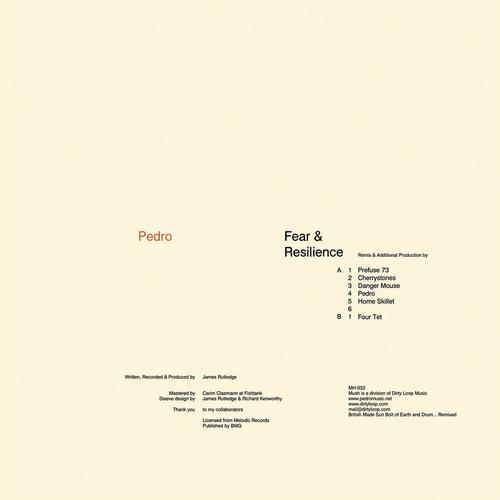 Album Art - Fear & Resilience