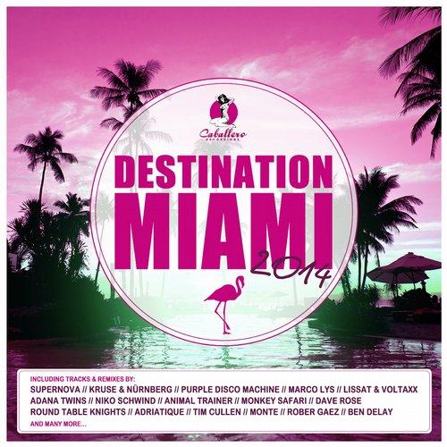 Destination: Miami 2014 Album Art