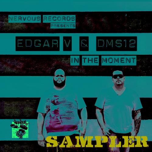 Album Art - In The Moment - Sampler