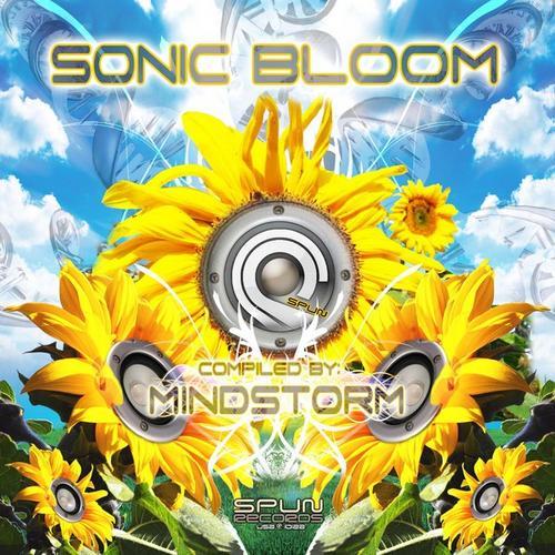 Album Art - SonicBloom