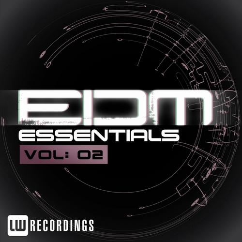 EDM Essentials Vol. 02 Album