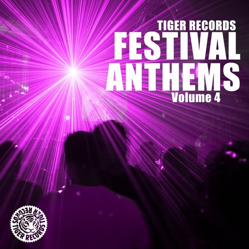 Album Art - Festival Anthems Vol. 4