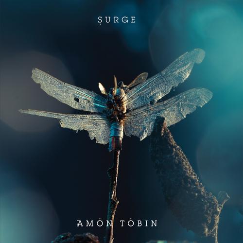 Album Art - Surge