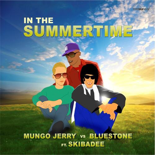 Album Art - In The Summertime