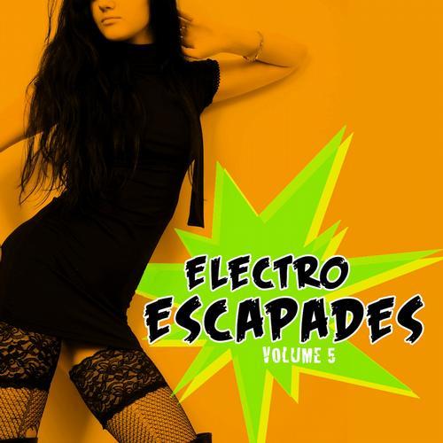 Electro Escapades, Vol. 5 Album Art