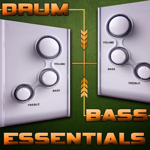Album Art - Drum & Bass Essentials 2013
