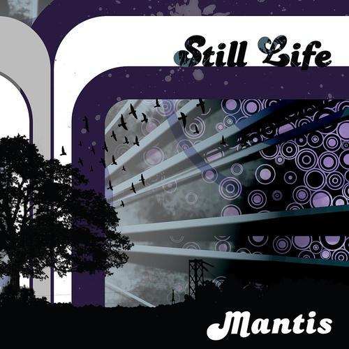 Album Art - Still Life