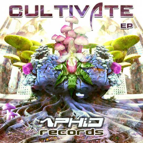 Album Art - Cultivate EP