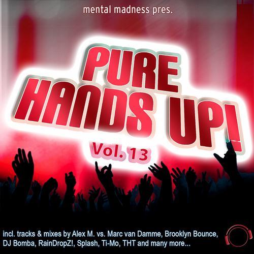 Album Art - Mental Madness Presesent Pure Hands Up! Volume 13