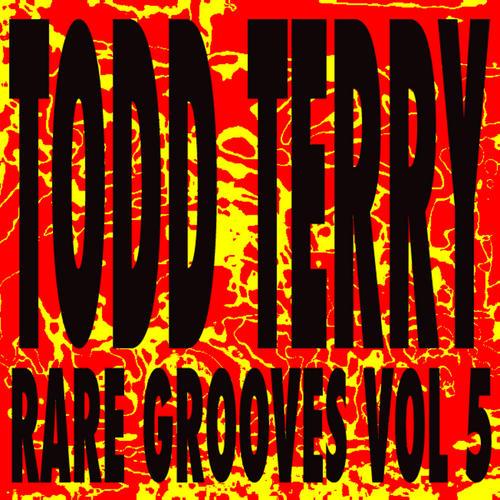 Todd Terry's Rare Grooves Volume 5 Album Art