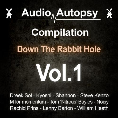 Down The Rabbit Hole vol.1 Album Art