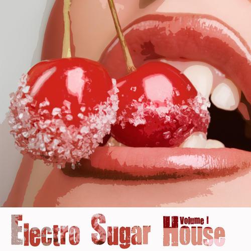 Album Art - Electro Sugar House Volume 1