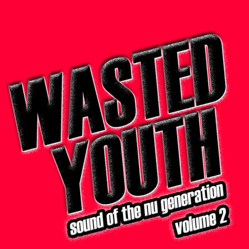 Album Art - Wasted Youth Volume 2