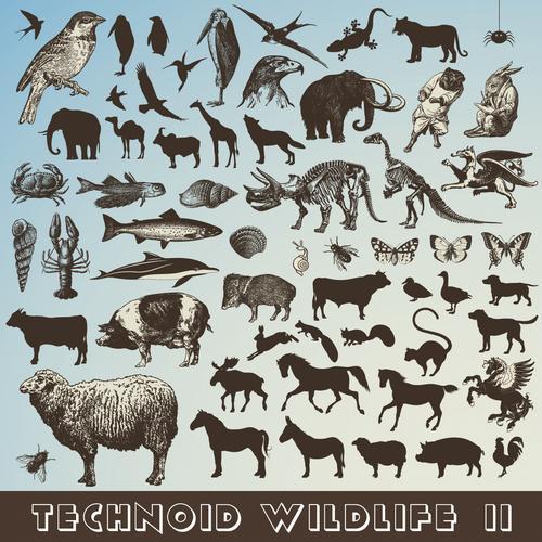 Album Art - Technoid Wildlife II