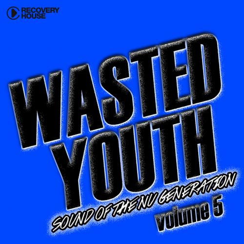 Album Art - Wasted Youth Volume 5