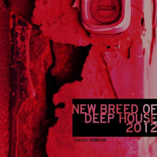New Breed Of Deep House 2012 Album Art