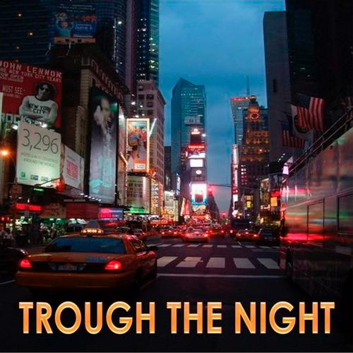 Album Art - Trough The Night