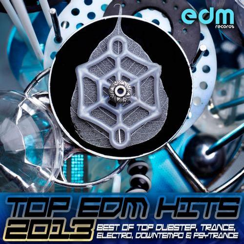 Album Art - Top EDM Hits 2013 - Best of Top Dubstep, Trance, Electro, Downtempo & Psytrance