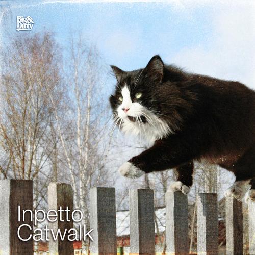 Album Art - Catwalk