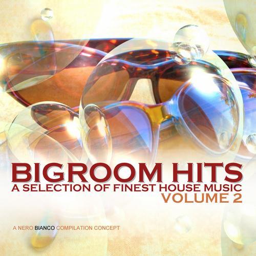 Album Art - Bigroom Hits Volume 2