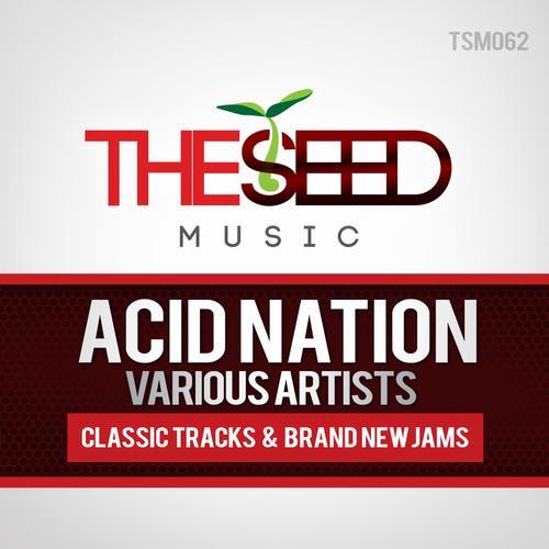 Acid Nation Album Art