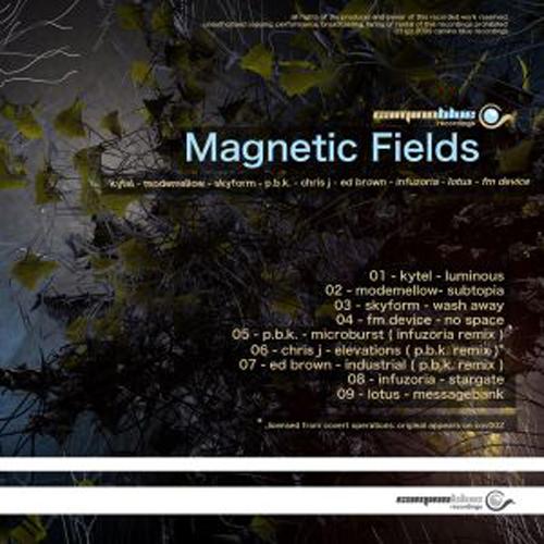 Album Art - Magnetic Fields