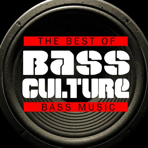 Album Art - Bass Culture - The Best of Bass Music