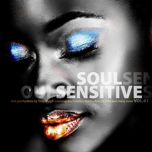 Album Art - Soul Sensitive Volume 1