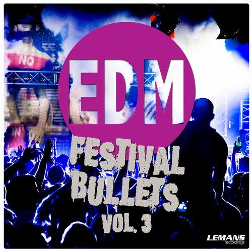 EDM Festival Bullets, Vol. 3 Album Art