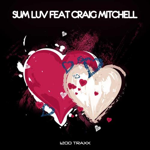 Album Art - Sum Luv feat. Craig Mitchell