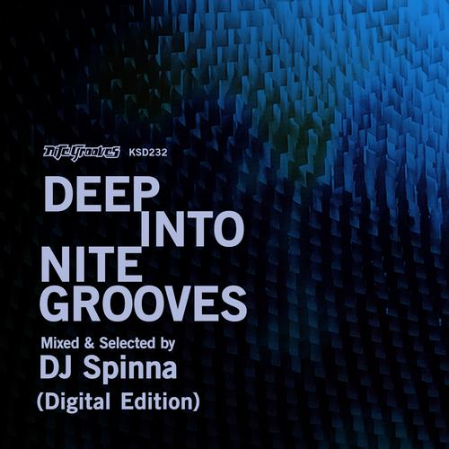 Album Art - Deep Into Nite Grooves: Mixed & Selected By DJ Spinna (Digital Edition)
