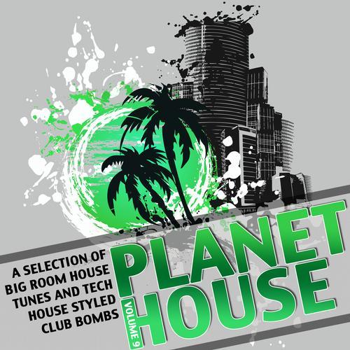 Album Art - Planet House Vol. 9