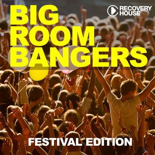 Album Art - Bigroom Bangers Vol. 7 - Festival Edition