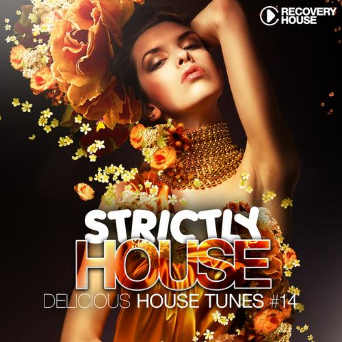 Album Art - Strictly House - Delicious House Tunes Vol. 14