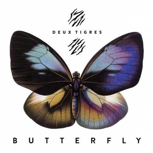 Butterfly Album Art