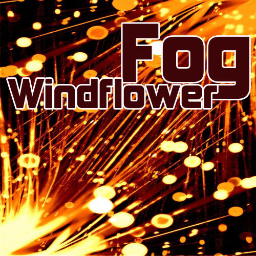 Album Art - Windflower