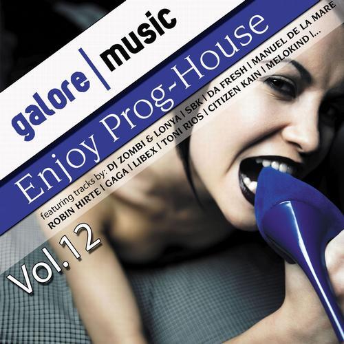 Album Art - Enjoy ! Prog-House Vol. 12