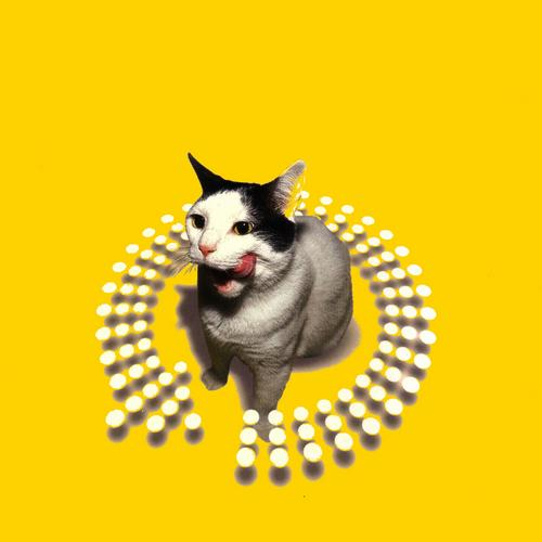 Album Art - TWIST This Pussy (mixed By Peter Rauhofer)
