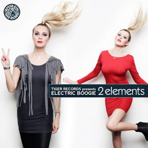 Album Art - 2Elements :: Electric Boogie