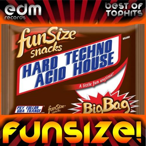 Album Art - FunSize! (Hard Techno Acid House & Psychedelic Fullon Goa Trance)