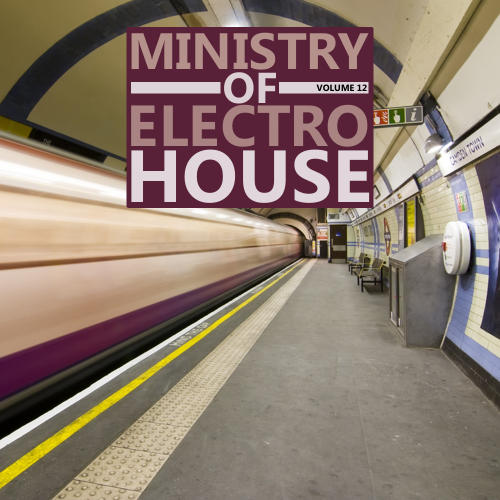 Album Art - Ministry Of Electro House Volume 12