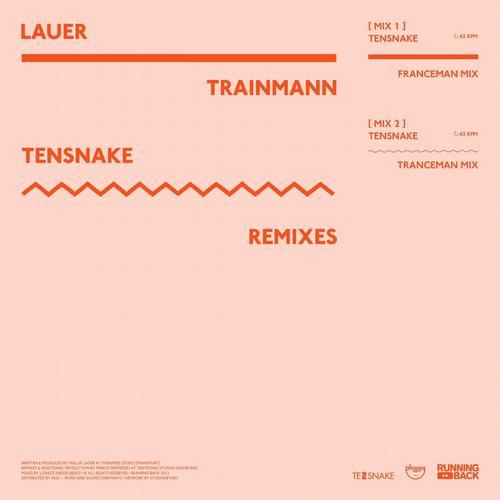 Album Art - Trainmann (Tensnake Remixes)