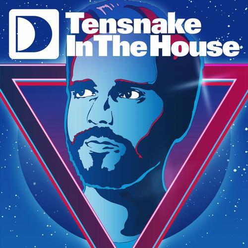 Album Art - Tensnake In The House