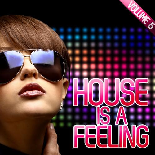 Album Art - House Is A Feeling Vol. 6