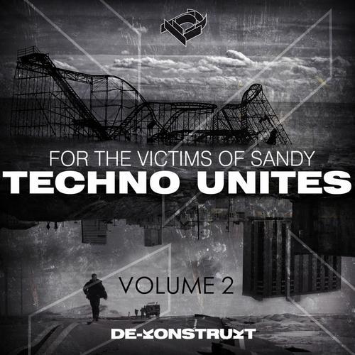 Album Art - Techno Unites 'Victims of Sandy' Volume II